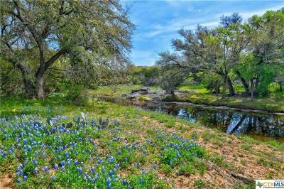 Burnet  Residential Lots & Land For Sale: 8701 W Hwy 29