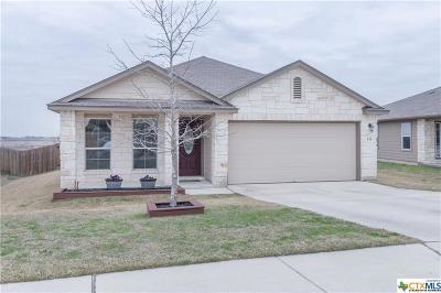 San Marcos Single Family Home For Sale: 115 Hoya Lane