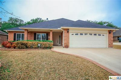 Belton Single Family Home For Sale: 276 Arrowhead Point Road