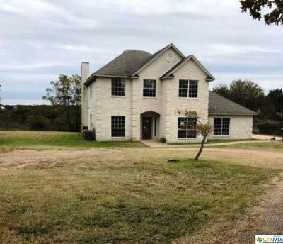 Belton Single Family Home For Sale: 5299 Denmans Loop