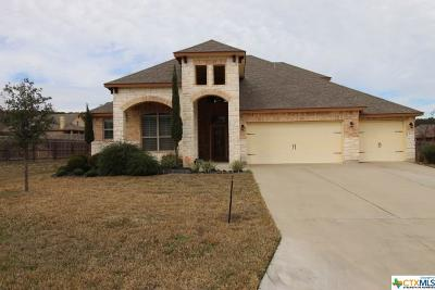 Harker Heights Single Family Home For Sale: 3903 Stone Creek Drive