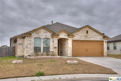 New Braunfels Single Family Home For Sale: 2534 Diamondback