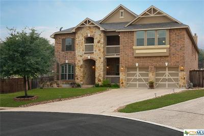 San Antonio Single Family Home For Sale: 19219 Deep Bay