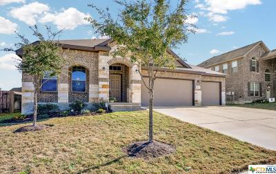Single Family Home For Sale: 911 High Plains