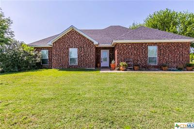 Temple, Belton Single Family Home For Sale: 4956 Airville Road