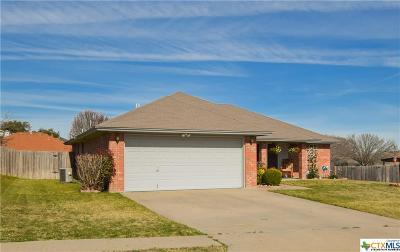 Copperas Cove Single Family Home For Sale: 505 Citation Drive