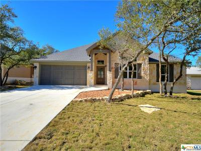 Wimberley Single Family Home For Sale: 20 Champions Circle