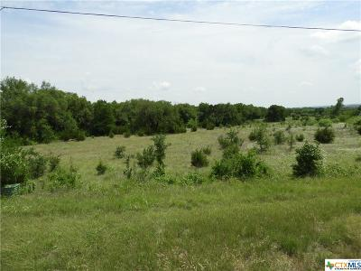 Belton Residential Lots & Land For Sale: 0000 Fm 1670