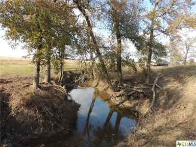 Williamson County Residential Lots & Land For Sale: 1662 County Road 465