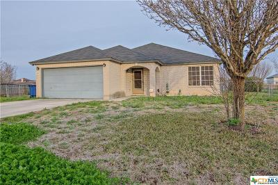 Seguin Single Family Home For Sale: 509 Cordova