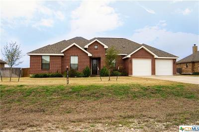 Seguin Single Family Home For Sale: 4682 Prairie Summit