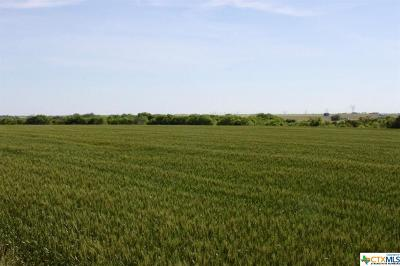 Williamson County Residential Lots & Land For Sale: Tract 1 County Road 384