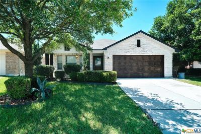 Williamson County Single Family Home For Sale: 419 River Crossing Trail