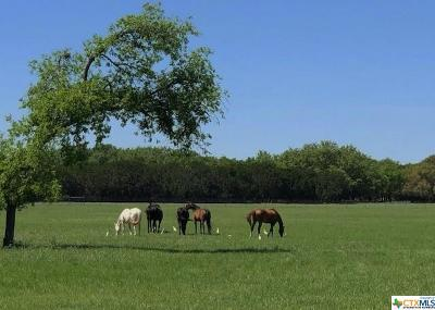 Salado Residential Lots & Land For Sale: Tbd Fm 2484