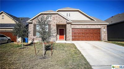 Cibolo Single Family Home For Sale: 533 Landmark Gate