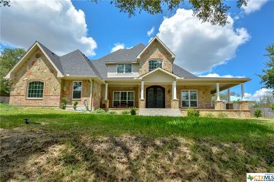 Belton Single Family Home For Sale: 3205 River Place