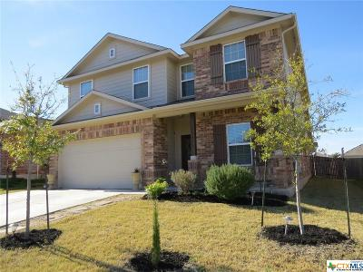 Pflugerville Single Family Home For Sale: 13416 Kearns