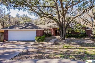 Belton Single Family Home For Sale: 3020 Summit Dr
