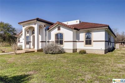 San Antonio Single Family Home For Sale: 8806 Mission Rd
