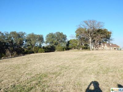 Harker Heights Residential Lots & Land For Sale: 102 Vista Drive