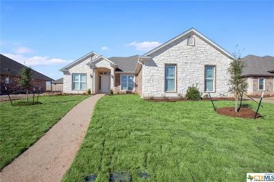 McLennan County Single Family Home For Sale: 10320 Creekside Lane