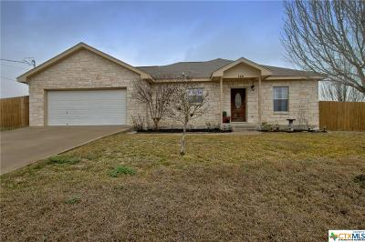San Marcos Single Family Home For Sale: 144 Hollys Way