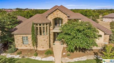 Williamson County Single Family Home For Sale: 407 W Majestic Oak Lane