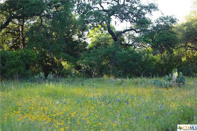 New Braunfels Residential Lots & Land For Sale: 531 River Chase