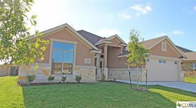 Killeen Single Family Home For Sale: 7701 Zircon Drive
