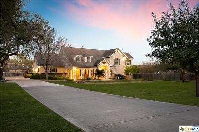 San Antonio Single Family Home For Sale: 26118 Choctaw Trail
