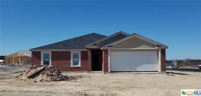 Killeen Single Family Home For Sale: 6701 Captain Call Drive