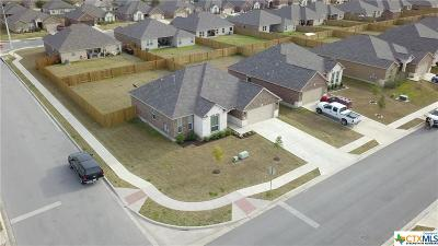 Kyle Single Family Home For Sale: 1157 Violet