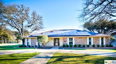 New Braunfels Single Family Home For Sale: 19 Mission Drive