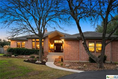 San Marcos Single Family Home For Sale: 729 Willow Ridge
