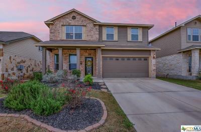 Single Family Home For Sale: 248 Oak Creek Way