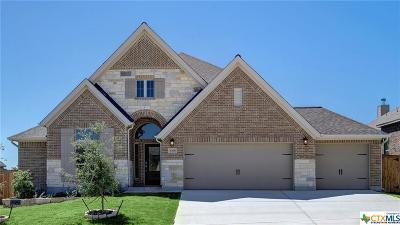 Boerne Single Family Home For Sale: 9768 Innes Place