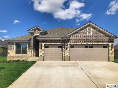 Killeen Single Family Home For Sale: 7602 Pyrite Drive