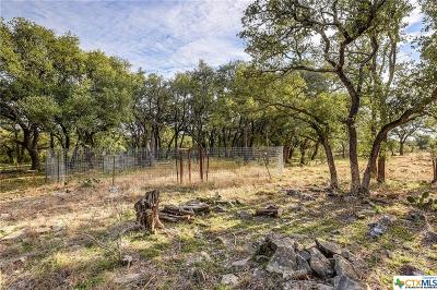 Williamson County Residential Lots & Land For Sale: 124 Appaloosa Cove