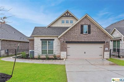 Williamson County Single Family Home For Sale: 569 Scenic Bluff Drive