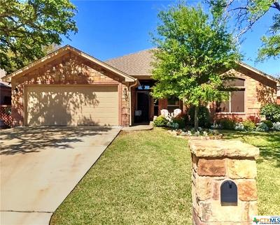Belton Single Family Home For Sale: 3213 Wildcatter Drive