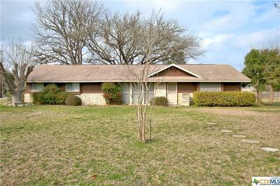 Canyon Lake Single Family Home For Sale: 518 Live Falls