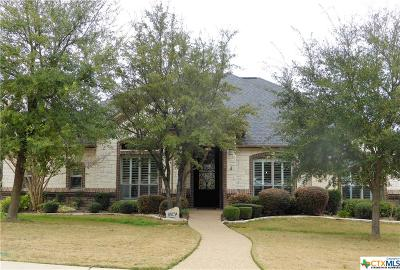 Belton Single Family Home For Sale: 602 Eagle Landing Drive