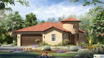 San Marcos TX Single Family Home For Sale: $351,163
