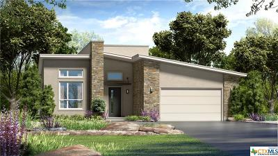 San Marcos TX Single Family Home For Sale: $435,628