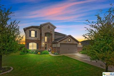 Kyle TX Single Family Home For Sale: $264,000