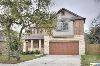 San Marcos TX Single Family Home For Sale: $319,000