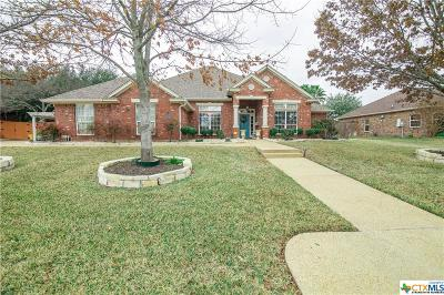 Nolanville Single Family Home For Sale: 4004 Lazy Brook Drive