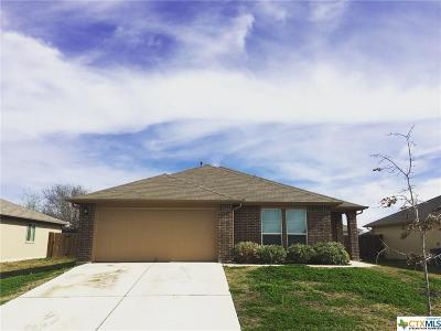 Single Family Home For Sale: 312 Zarya