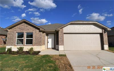 Killeen Single Family Home For Sale: 6602 Catherine Drive