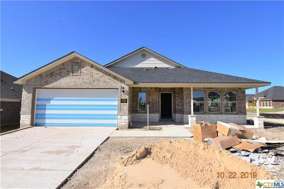 Killeen Single Family Home For Sale: 6200 Obsidian Drive
